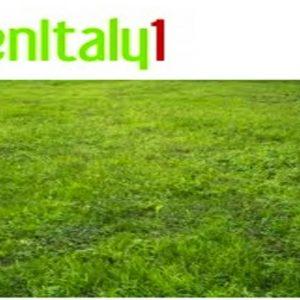 Unioncamere, Greenitaly: l'economia italiana si tinge di verde