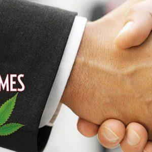 Usa, private equity alla conquista della cannabis