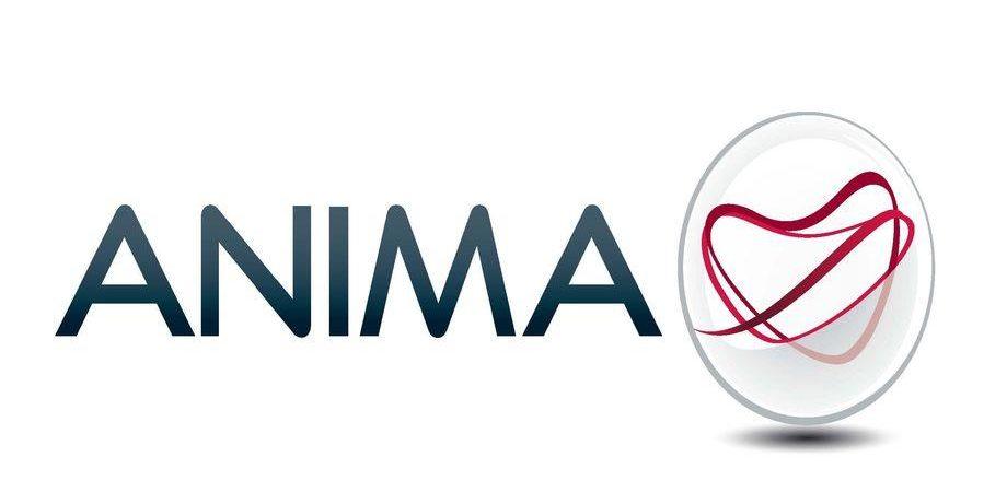 Anima Sgr: nomine e riassetto organizzativo, Di Naro nuovo vicedirettore
