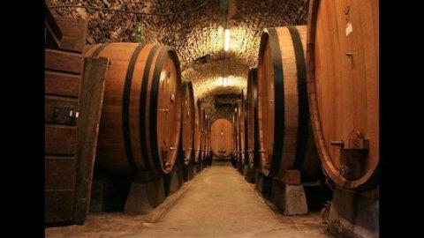 VINITALY INTERNATIONAL a New York: l'export vitivinicolo italiano riparte dagli States