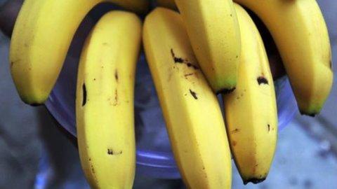 Nasce il nuovo colosso delle banane: fusione tra Chiquita e Fyffes