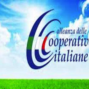 """AGCI: """"Le cooperative attive nella filiera della salute"""", analisi di un settore anticiclico"""
