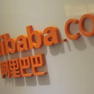 Alibaba, il coccodrillo che sfida lo squalo