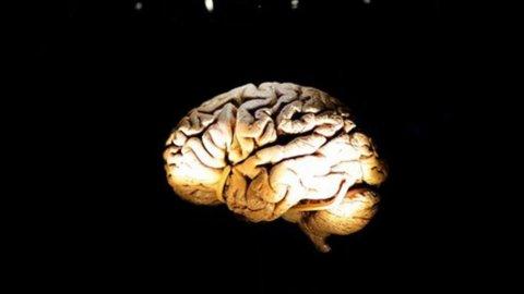 Lifely.it, la curiosità rallenta l'invecchiamento del cervello: i consigli della scienza