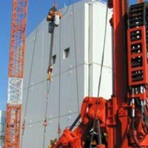 Fukushima, il riso non è radioattivo ma…