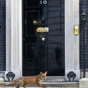 Gran Bretagna: si vota il 7 maggio. Incerto duello tra Cameron e Miliband, incognita Farage
