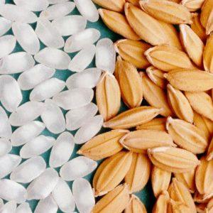 Guerra del riso e grano: made in Italy in ginocchio