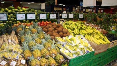 Agroalimentare: export sempre più vitale per l'Italia
