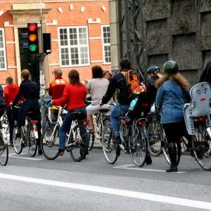 Bollo e targa sulle bici, ma non su tutte