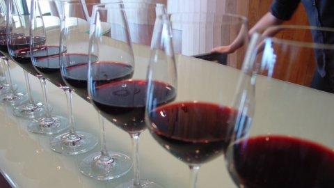 Mediobanca: investire nel vino è meglio che in Borsa