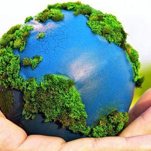 Pa ecosostenibile: la legge c'è, ma l'applicazione è lentissima