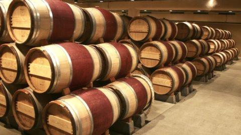 Associazione imprenditori vinicoli, Terenzi nominato presidente