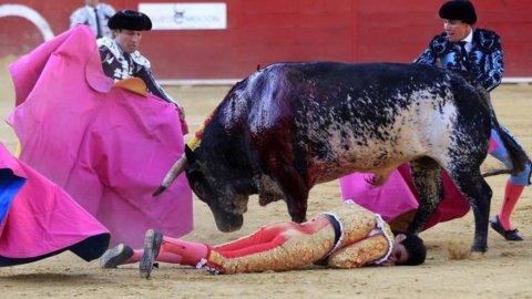 Spagna: torero muore durante la corrida