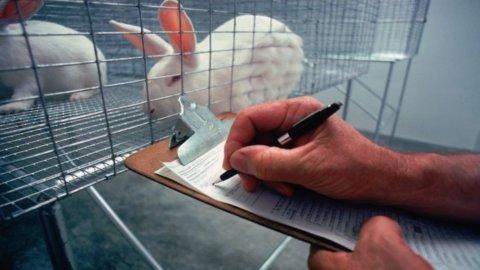 Ue, cosmetici: stretta su test animali