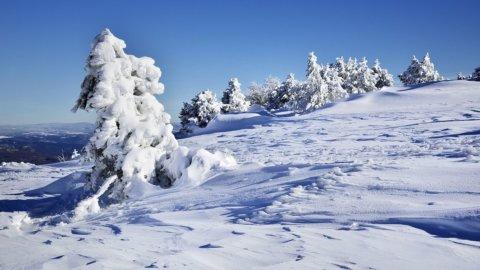 Meteo, allarme gelo: 300mila senza luce