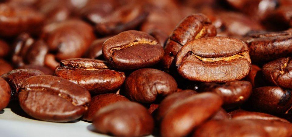 Su First&Food i record del Prosecco e il nuovo caffè Illy-De'Longhi