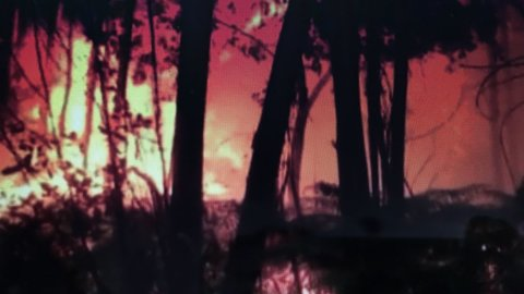 Portogallo: inferno di fuoco fa 62 morti VIDEO