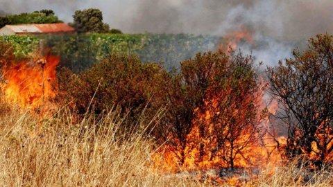Incendi: ancora nuovi roghi in Sicilia