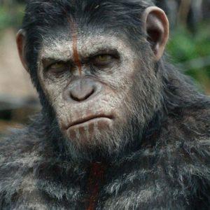 """Cinema: """"The War"""" e tornano le scimmie sul pianeta Terra"""